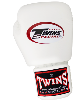 Twins Boxing Gloves 8.oz