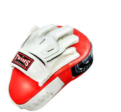 Twins Punch Mitts Curved