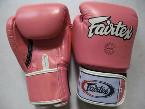 Fairtex BGV1  Leather Gloves 10.oz