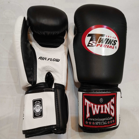 Twins Boxing Gloves 14.oz