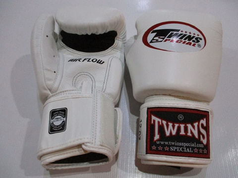 Twins Boxing Gloves 10.OZ