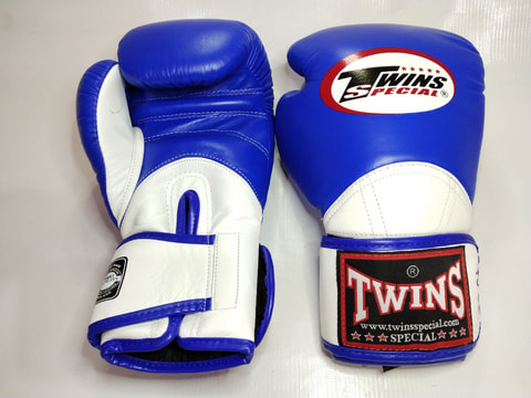 TWINS SPECIAL BGV11 Boxing Gloves [Blue/White]